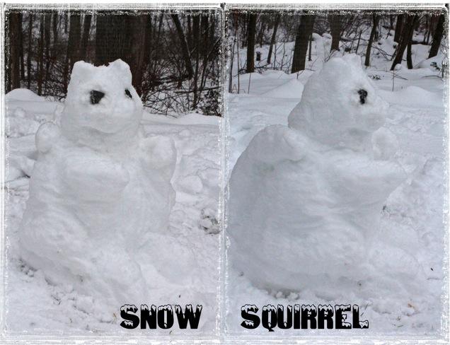 Snowsquirrel